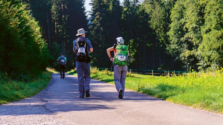 Waldmeister-Wander-Marathon