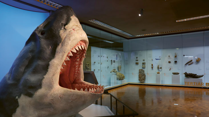 #MuseumsMittwochLive