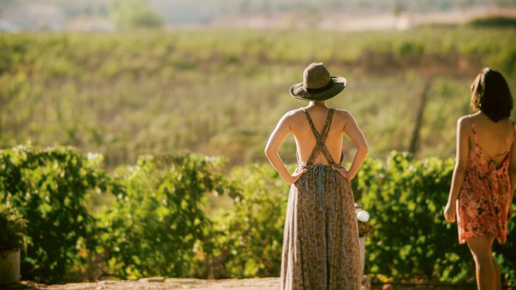 Sommerliche Wein-Zeit