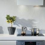 Küchenzeile mit Topf und Espressokocher auf dem Herd und Zitronenbäumchen